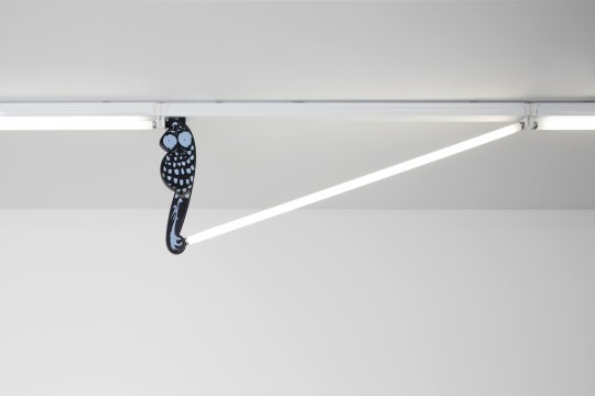 Fluorescent Fittings [Owl/Black and White], 2015